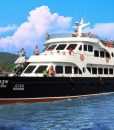 Phi Phi Island full day tour by Cruiser