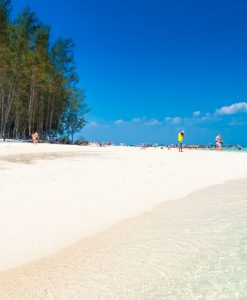 Best Phi Phi island tour from Krabi