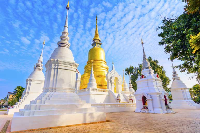 Wat Suan Dok temple tour