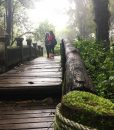 Doi Inthanon mountain trekking tour – Chiang Mai