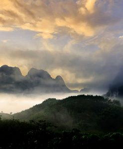 Khao Sok Lake boutique Tour 2 Days 1 Night from Phuket